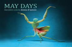 MAY DAYS